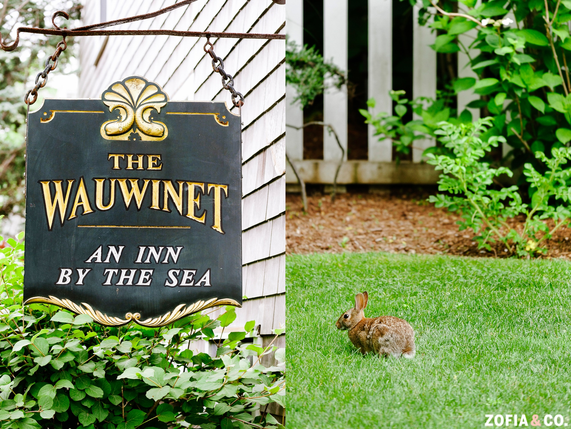 nantucket_wedding_wauwinet_ka-01